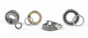 Radial Roller Bearings